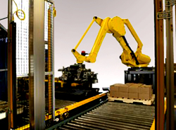 robotic palletizing system in a warehouse shipping operation